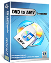 DVD to AMV Converter box-s