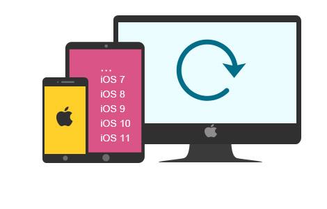 Unterstützt fast alle iOS-Geräte und iOS-Systeme