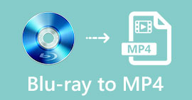 Blu-ray zu MP4