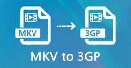 MKV à 3GP