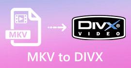 MKV à DIVX