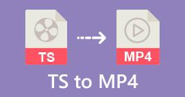 TS zu MP4