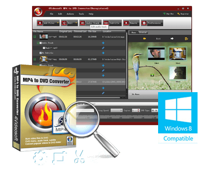 Best MP4 to DVD Converter