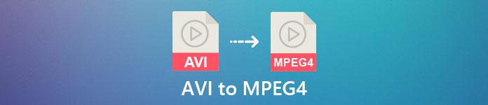 AVI en MPEG4